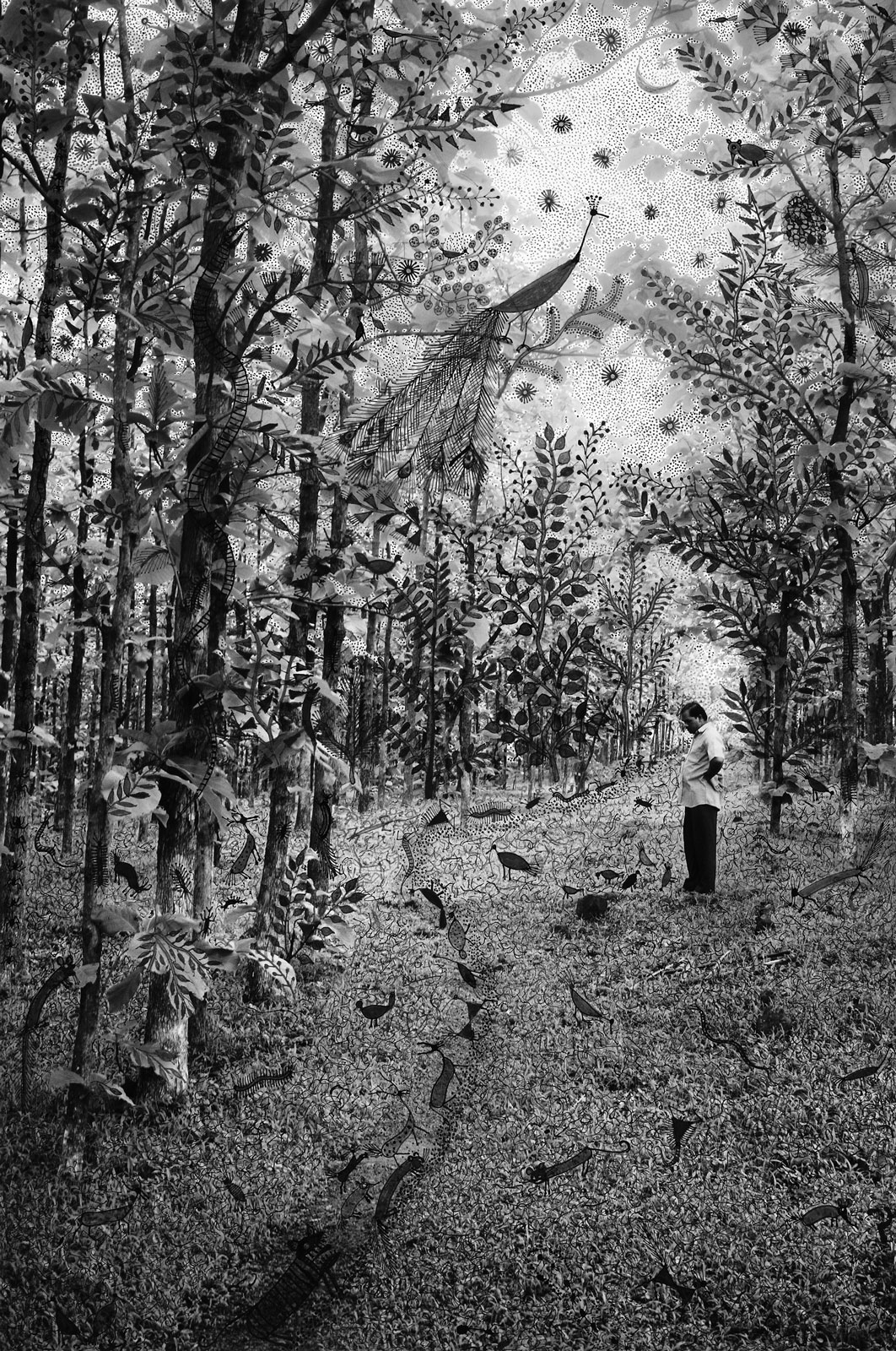 <i>Night Journey of Forest Dwellers</i> (2015), 24˝ × 16˝